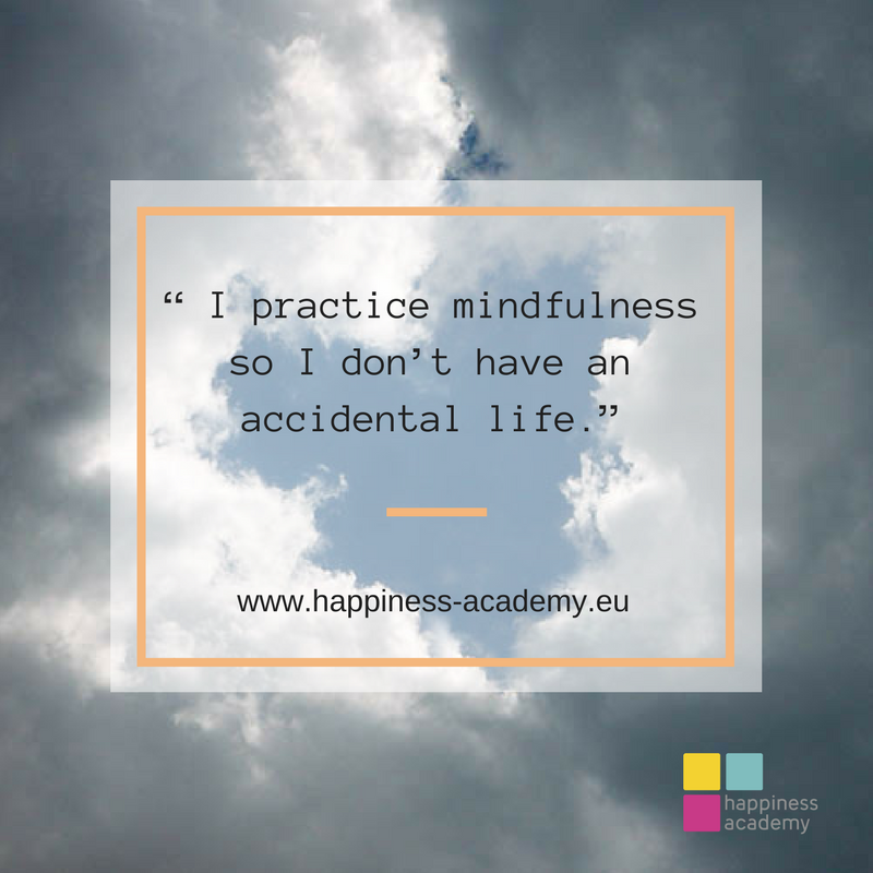 4 - mindfulness not to have an accidental life